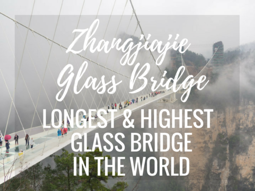 Walking on Air at the Zhangjiajie Glass Bridge