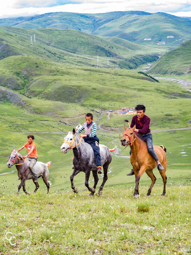 tagong-horse-festival