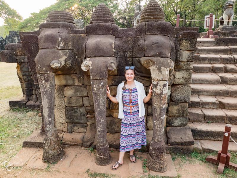 elephant-terrace