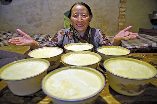 tibetan-yogurt