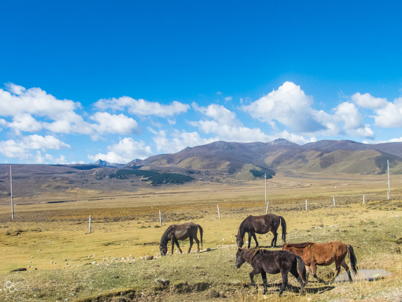 tibet-roadtrip-itinerary