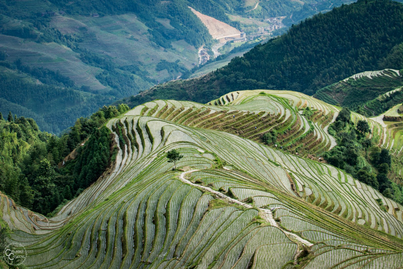 pingan-rice-terraces-guilin