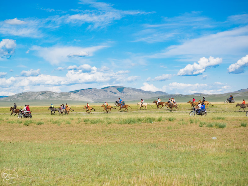horse-race-mongolia