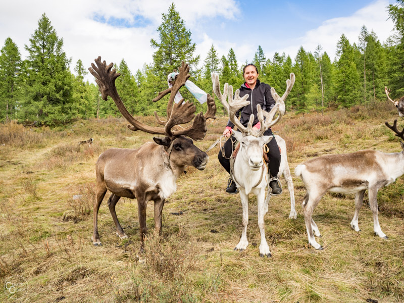 riding-reindeer-tour-mongolia