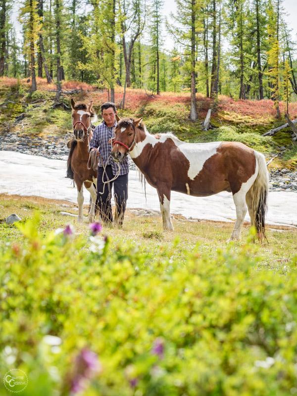mongolia-horse-trek