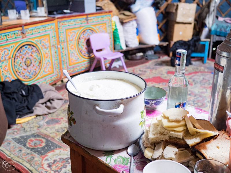 homemade-yogurt-mongolia