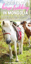 Horse Trekking In Mongolia | Mongolia Travel | Horseback Riding In Mongolia | Mongolia Horse Trek | Asia Travel